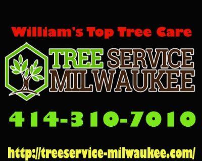 William's Top Tree Care