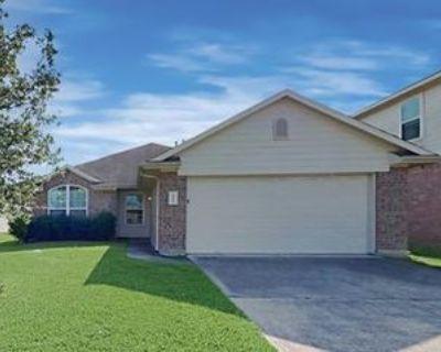 3523 Iris Ridge Way, Fresno, TX 77545 4 Bedroom House