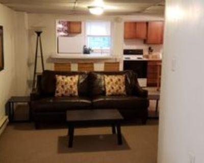 117 Wilkes St #2, Berkeley Springs, WV 25411 1 Bedroom Condo