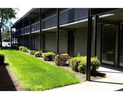Top floor end unit, newly renovated and pet friendly! Move-in Special