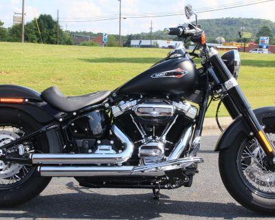 2020 Harley-Davidson Softail Slim Softail Cartersville, GA