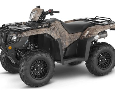 2021 Honda FourTrax Foreman Rubicon 4x4 Automatic DCT EPS Deluxe ATV Utility Chico, CA