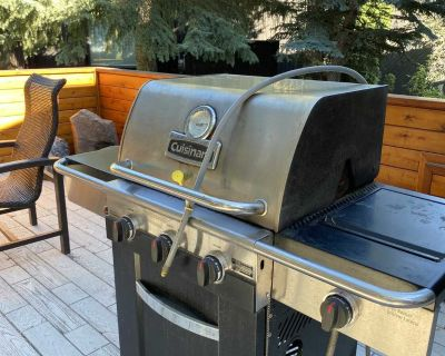 Free Gas BBQ with side burner