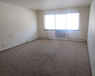 Nice home with 3 bedrooms, 2 baths, Big back and front yard with palm