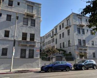 704 S Mariposa Ave, Los Angeles, CA 90005 1 Bedroom Condo
