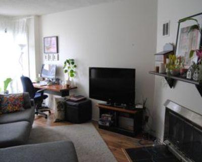 449 McLeod Street, Ottawa, ON K1R 5P5 2 Bedroom House