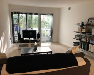 Newly Renovated Condo close to DC - All to Yourself! - West Springfield