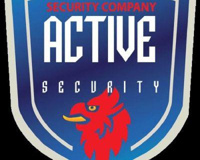 Active Security Enterprises