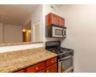 2 Bedroom 1 Bath In Chicago IL 60640