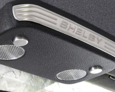 2005-2009 Ford Mustang 3 Piece Aluminum Shelby Logo Console Map Light Trim Svt