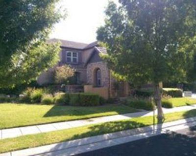 667 W Fauna Ave, Mountain House, CA 95391 4 Bedroom House