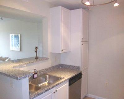 $3000 1 apartment in Arlington