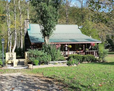 Pet Friendly Toccoa Riverfront Cabin with 1200' of Riverfront at your back door - Suches