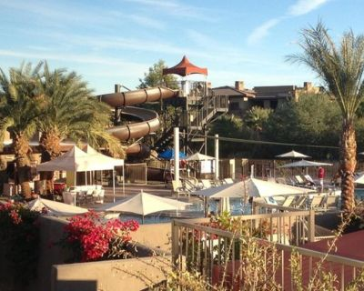 A Palm Desert Paradise during Coachella 2020 (October 9th weekend) - Palm Desert