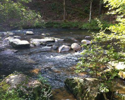 Fish Creel Lodge - N GA Mountains - Trophy Trout Stream - Ellijay - 3 acres - Ellijay