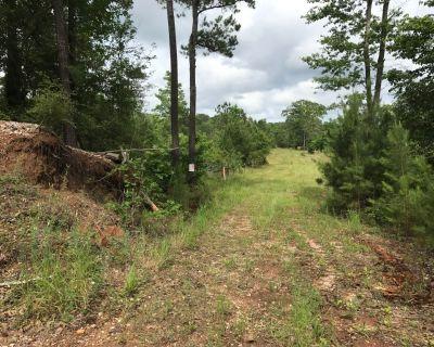 11.3 acres of land in Zavala Texas.