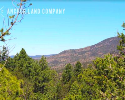 1 Acre for Sale in Timberon, NM