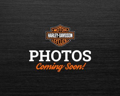 2018 Harley-Davidson 115th Anniversary Forty-Eight Cruiser Colorado Springs, CO