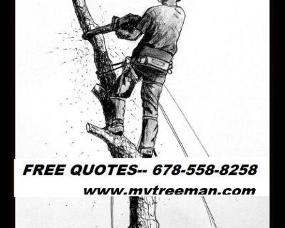 AFFORDABLE CUTS TREE SERVICE. (678)558-8258 mytreeman.com