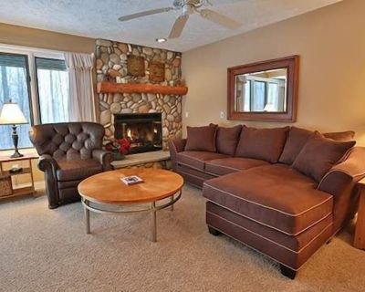 Comfy Trout Creek Condo #142 - 2 Bedrooms, 2 Baths with Kitchen, Fireplace. Pretty Wooded View - Harbor Springs