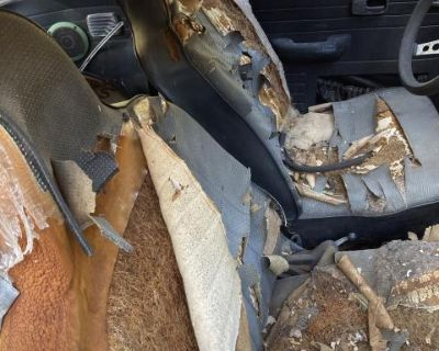 Set of Front and Rear Seats *Local Pickup*