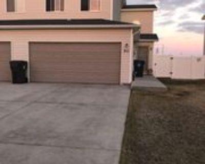 311 Chris Loop, Cheyenne, WY 82007 3 Bedroom House