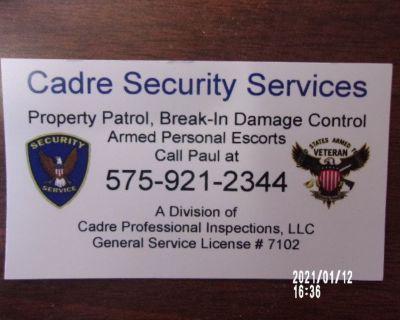 Cadre Security Service Co.