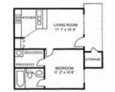 The Woods Apartments - One Bedroom One Bath - Small