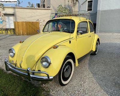 1967 bug runs and drives!