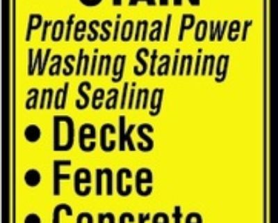 RICH'S POWER WASH AND STAIN Pr...