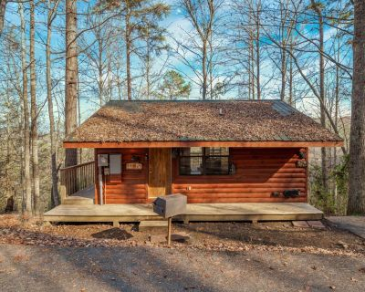 Lily Pad: Hot Tub, Heart Shaped Jetted Jacuzzi, Stone Gas Log Fireplace! - Pigeon Forge