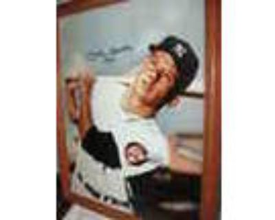 1952 10x13 Autographed Mickey Mantle Picture