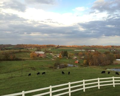 Great for Friends & Families, Breathtaking View, Nature Trails, Farm Animals - Millersburg
