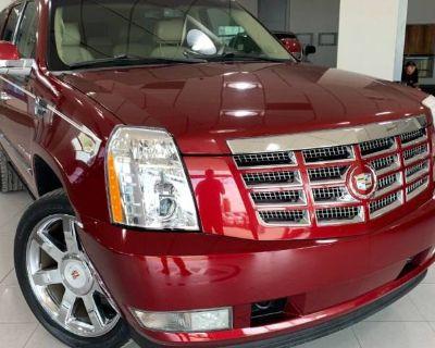 2009 Cadillac Escalade Standard