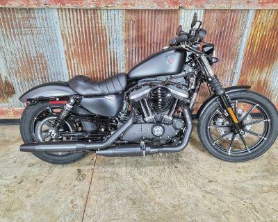 2021 Harley-Davidson Iron 883 Sportster Chippewa Falls, WI