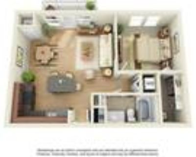 Uptown Lake Apartments - One Bedroom