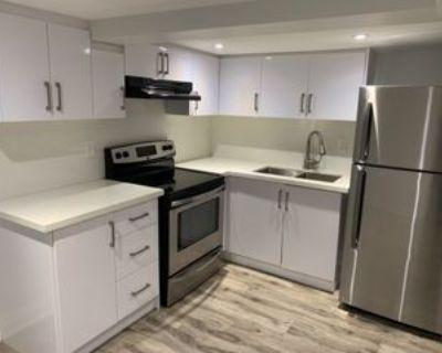Gladstone Ave & Shanly St #Basement, Toronto, ON M6H 3J4 Studio Apartment