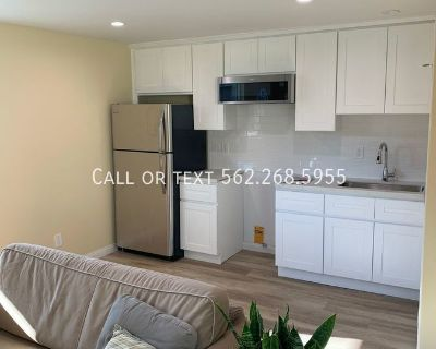 Brand New Studio Apartment for Rent in Lakewood!