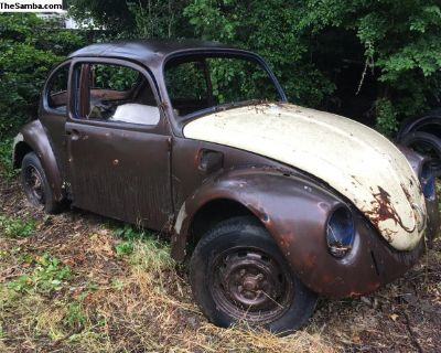 1969 bug rolling shell project