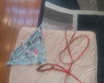 Dog bed leash, collar and scarf for small dog