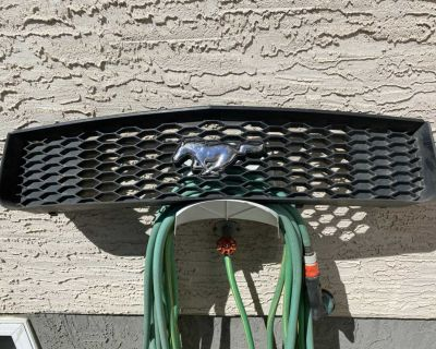 2005 Mustang grille