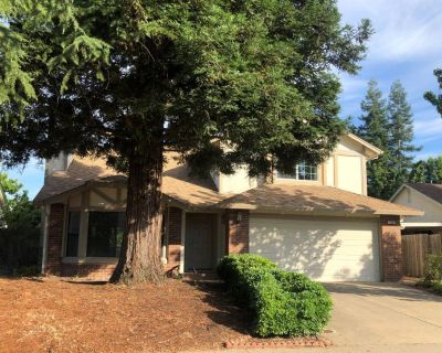 Expansive 3 Bed / 2.5 Bath home with new kitchen, flooring, and bathrooms..
