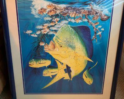 Framed Artwork - Guy Harvey & other