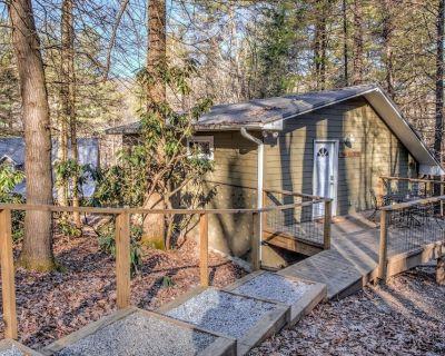 Pisgah Hillside Haven - Brevard/Asheville, hiking, mtn biking, shopping! - Pisgah Forest