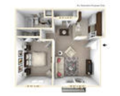 Autumn Woods Apartments - The Oak 1 BR 1 BA