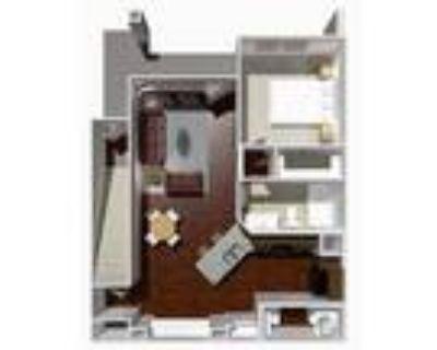Austin Park Apartments - 1 Bed 1 Bath- Chestnut