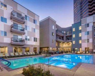 E Thomas Rd, Phoenix, AZ 85012 1 Bedroom Condo