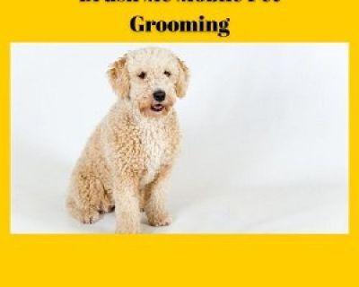 Brush Me Mobile Pet Grooming