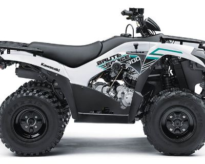 2022 Kawasaki Brute Force 300 ATV Sport Utility Asheville, NC