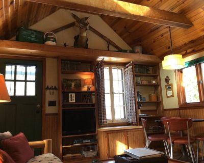 Cozy one bedroom Hideaway Resort cabin #6 - Lake Wissota